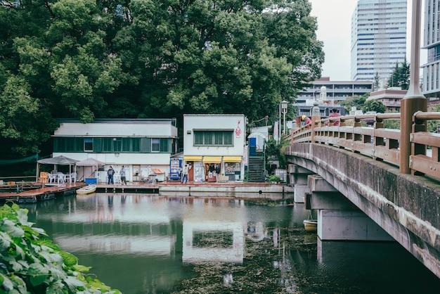 市内の川に架かる橋の眺め