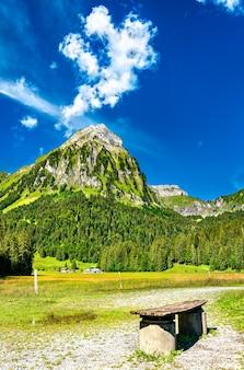 スイスアルプスのオーバー湖にあるブリュンネリストック山の眺め