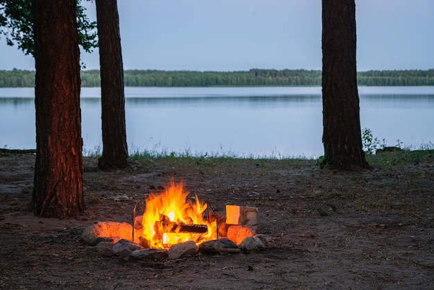 Вид на горящий костер у озера в сумерках в окружении силуэтов деревьев.