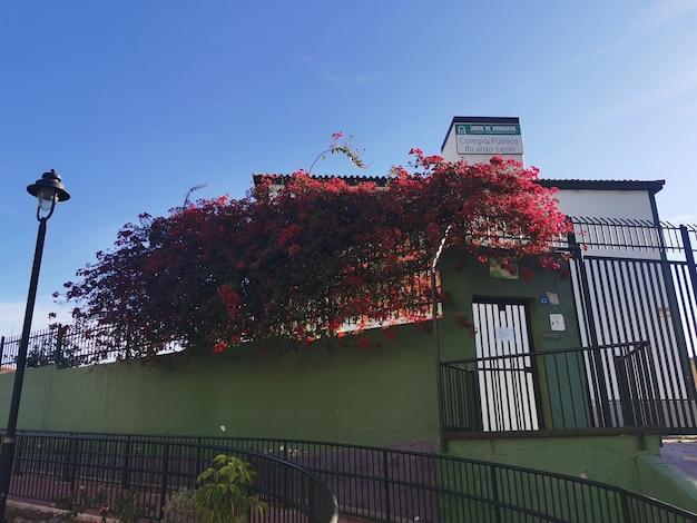 リカルドレオンスペイン公立学校のファサードの眺め