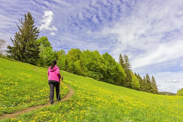 日中の木々に覆われた緑の風景の中の女性のハイキングのビュー