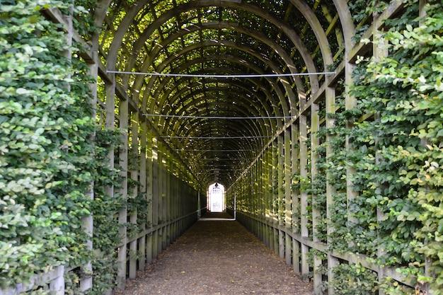 런던에 있는 햄프턴 코트 궁전의 전망 햄프턴 코트는 원래 토마스 추기경을 위해 지어졌습니다.