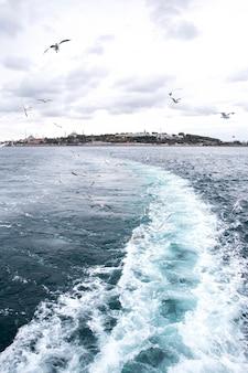 曇りの天気で船からのイスタンブールの眺め、ボート、トルコからの痕跡として飛んでいるカモメ、波と泡
