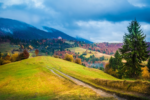 Вид на пышную красочную долину с дорогой и деревьями. монтажный путь на луге на склоне холма с голубым небом на фоне. понятие красоты природы.
