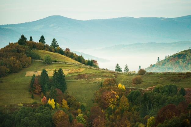 Вид на долину с красочными деревьями и зелеными альпийскими лугами.