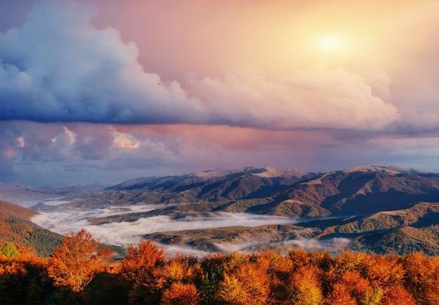 秋、カルパティア山脈、ウクライナの霧の霧山のビュー
