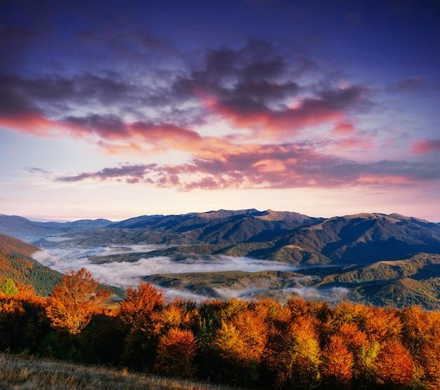 秋、カルパティア山脈の霧の霧山の眺め。ウクライナ。