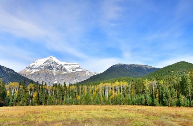 イギリスのコロンビアカナダのロブソン山の眺め