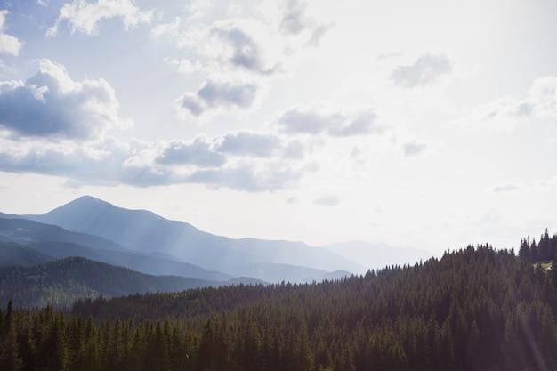 Carpathians, 우크라이나에서 산 풍경의 보기