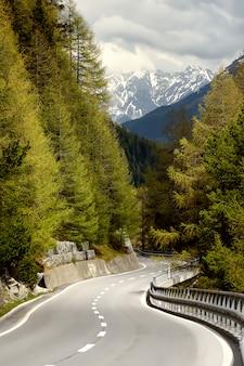 晴れた春の日にスイス国立公園を通って道の眺め。スイスの風光明媚な場所。