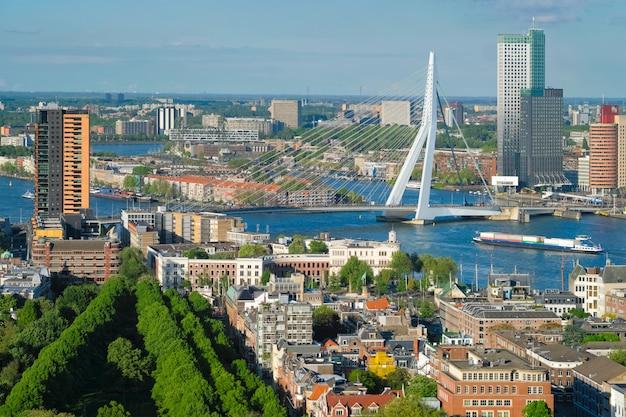 Вид на город роттердам и мост эразма