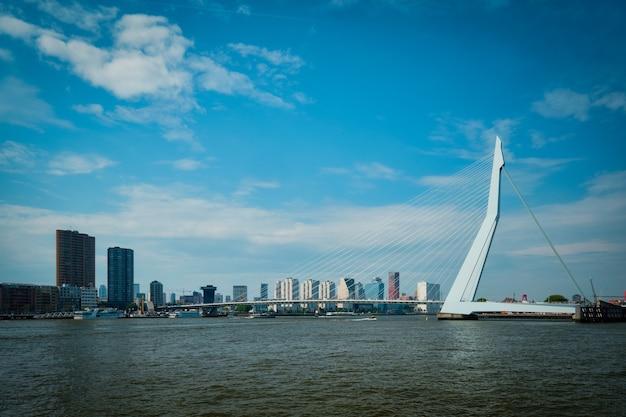 Вид на роттердам через ниве маас с мостом эразмусбруг роттердам нидерланды