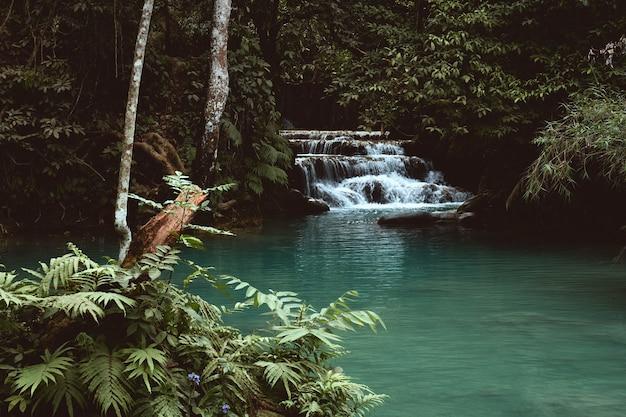 라오스 루앙프라방의 꽝시 폭포 정글에있는 작은 폭포보기