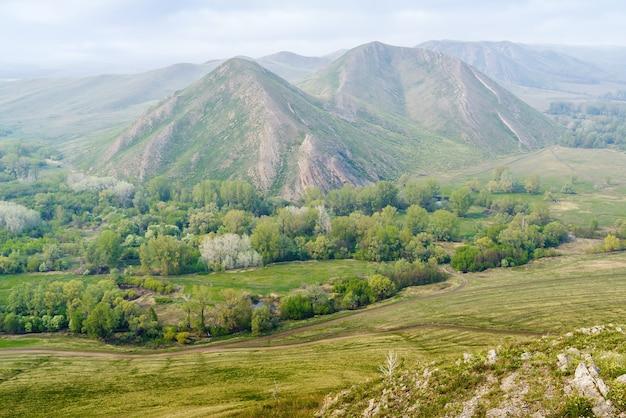 러시아 andreevka 마을 orenburg 지역 근처의 안개를 통해 봄 산 풍경의 전망