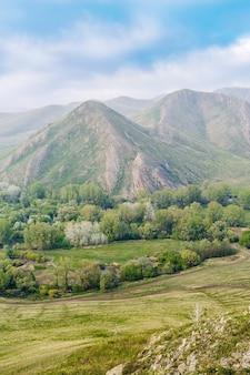 Andreevka 마을 orenburg russia 근처의 안개를 통해 봄 산 풍경의 전망