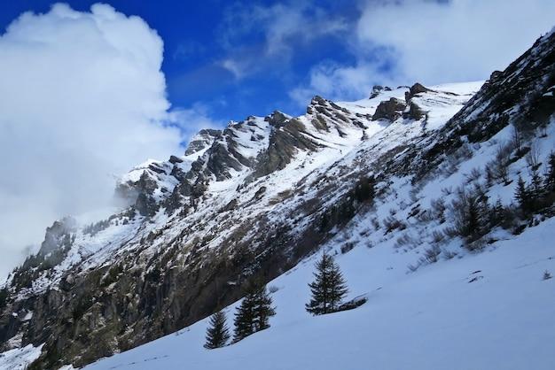 유명한 관광 열차 빙하 익스프레스, 융프라우, 스위스에 스위스 알프스의 전망.