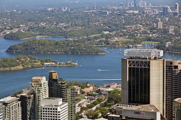 Вид на центр сиднея с башни, австралия
