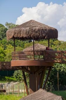 Вид на достопримечательность, известную как саванна, в биопарке рио-де-жанейро.
