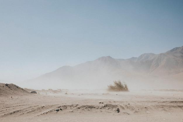 Вид на калифорнийскую пустыню