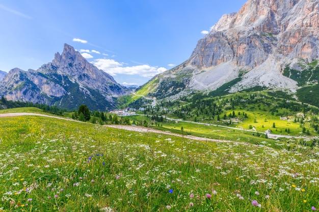 イタリアアルプスのヴァルパローラ峠にあるドロミテ山と美しく咲く牧草地の眺め