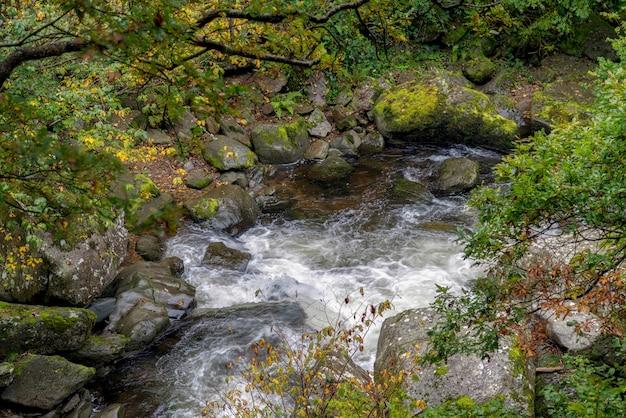 이스트 린 강의 전망