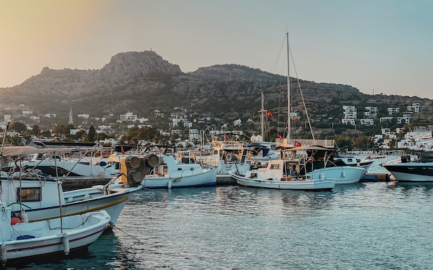 桟橋に係留されたボート、山と海を見下ろすヤシの木があるトルコのリゾートタウンの堤防の眺め。