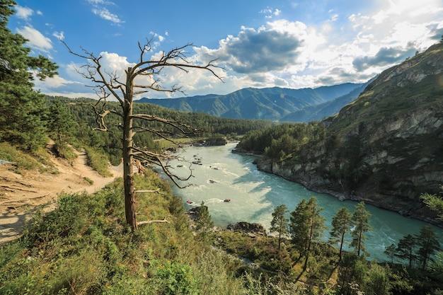 염소 산책로에서 화학 수력 발전소까지의 카툰 강 전망
