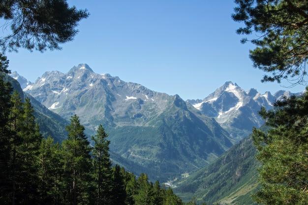 Вид на горный пейзаж с хвойными лесами, ледниками и горными вершинами.