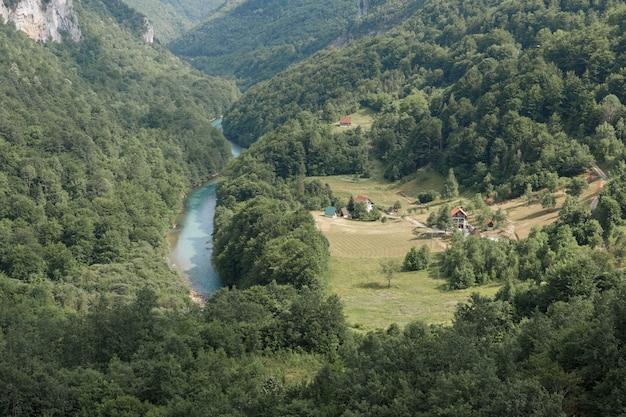 緑の峡谷の山川を上から見たところ。山を旅する