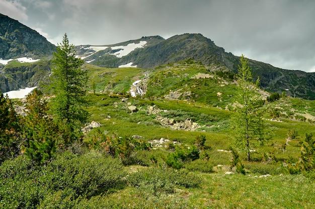 Вид на горные склоны со снегом на вершинах. облачное небо над горными вершинами. хвойный лес, растущий на горных склонах. алтай