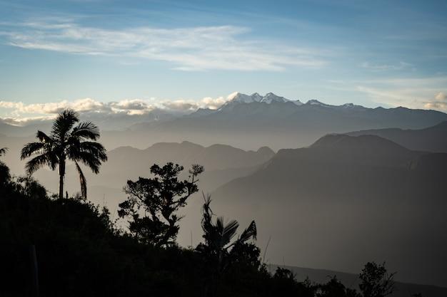 Вид на горы с cloudscape и пальмами на переднем плане. концепция путешествий и приключений. фото высокого качества