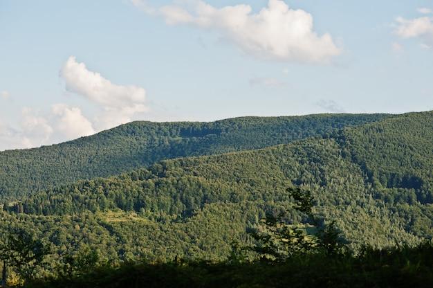 Вид на хребет карпатских гор на западе украины