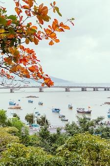 Вид на реку кай и город