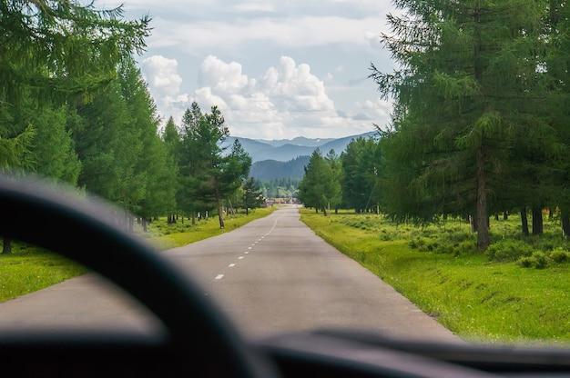 Вид на дорогу глазами водителя из машины. езда по трассе в лесу между зелеными деревьями
