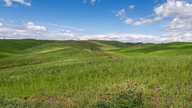 아름다운 토스카나 시골의 전망