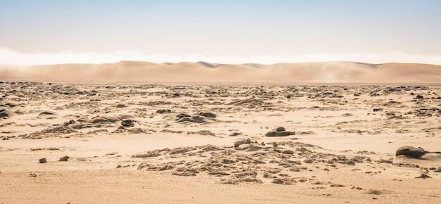 ナミビアのスケルトンコーストの砂漠の砂丘の眺め