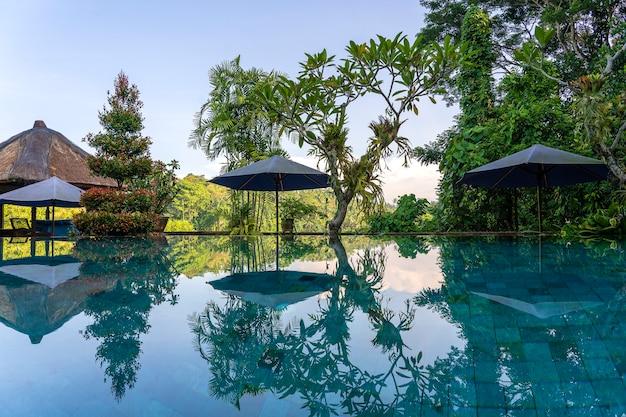 インドネシア、バリ島、ウブドの日の出の朝のトロピカルガーデンのスイミングプールのビューをクローズアップ