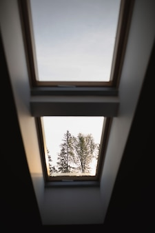 집의 작은 창을 통해 나무의 보기