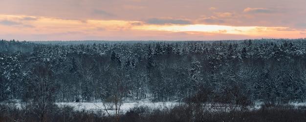 Вид на зимний лес с красным небом на закате