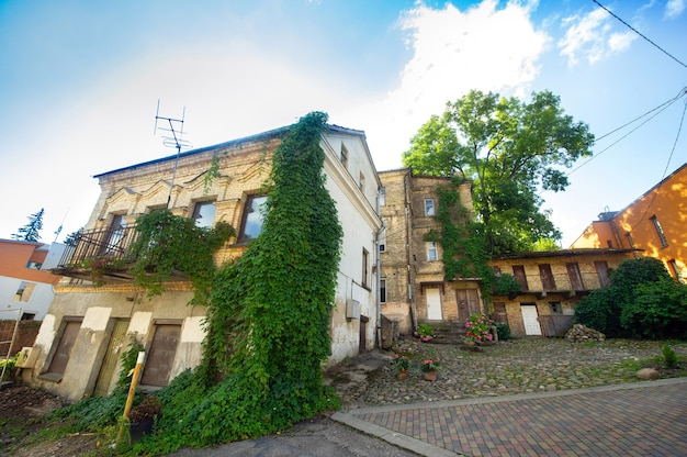 View of an old residential building with paved paving stones. green plants on a house in vilnius, lithuania.