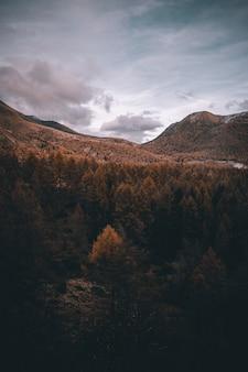 秋の霧のアルプスの山々の眺め