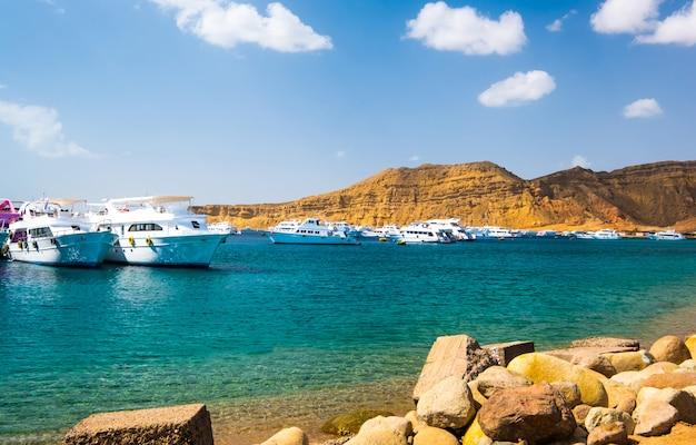 白い船と港を見る