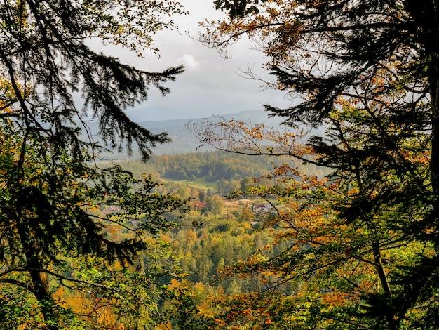 가을에 안개 속에서 산에 봅니다. 로어 실레 지아, 폴란드
