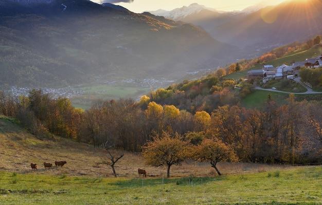 日没時の太陽の下の丘にある高山の村のある牧草地の眺め