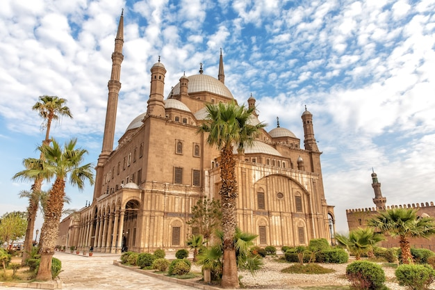 Вид на великую мечеть мохаммеда али-паши в каире.