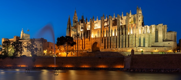 View of palma de mallorca cathedral by night, spain, europe