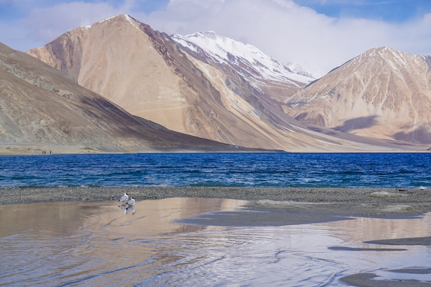 View of pangong lake in leh, ladakh region, india