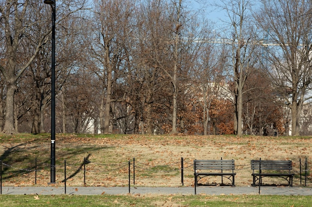 View of a park during the afternoon in washington dc, usa.