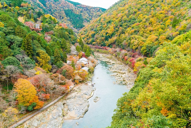 View point of the river and forest in autumn season at arashiyama