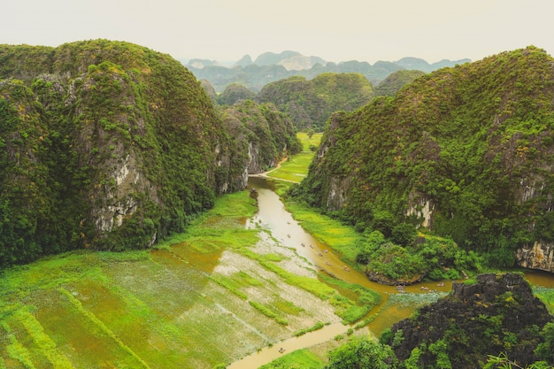 View of rice field and river in tam coc , tam coc is the destination of ninh binh province in vietnam